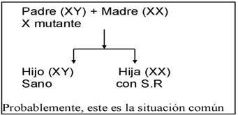 Gráfico sobre el Síndrome de Rett donde aparece el padre con cromosoma X mutado: hijo sano, hija afectada