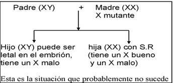 Gráfico sobre el Síndrome de Rett donde aparece la madre con cromosoma X mutado: hija afectada, hijo no viable