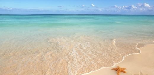 playa de arena fina y estrella de mar que puedes encontrar en el localizador de playas