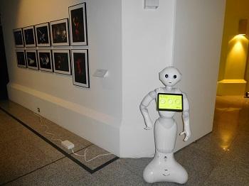 Robot de entrada