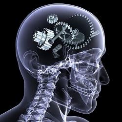 Traumatismo craneoencefálico. Dobujo de una cabeza en forma de radiografía con varias tuercas de engranaje en su cerebro